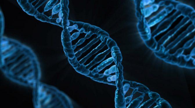 Hvad kan vi egentlig bruge DNA målinger til?