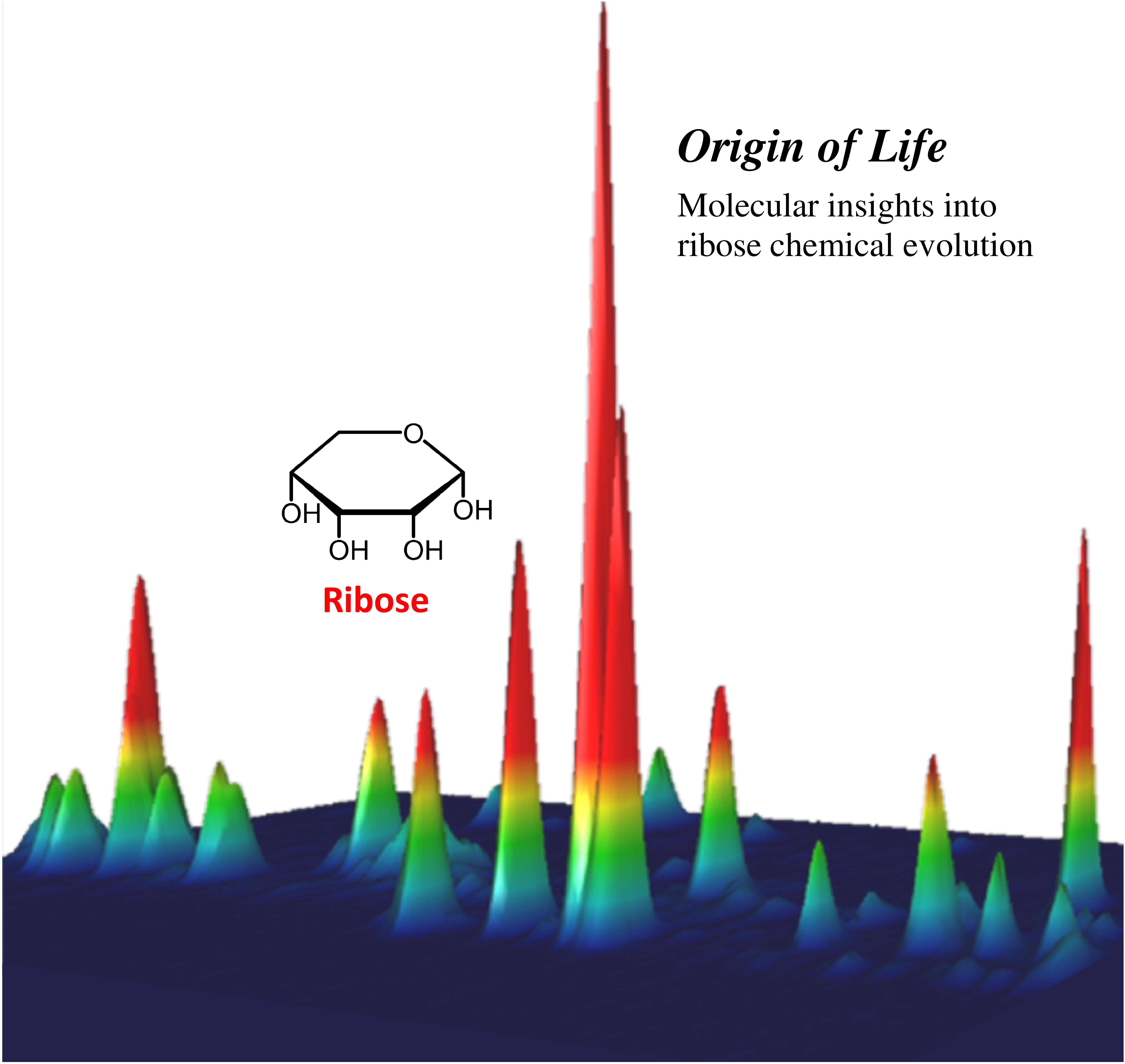 Gas kromatografi af simuleret komet, hvor en UV bestrålet is af vand, metanol og ammoniak viser dannelsen af en række sukkerarter, herunder den centrale sukkerenhed i RNA, ribose. (Copyright C. Meinert - CNRS).